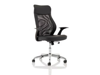 Dynamic Baye Mesh and Leather Office Chair