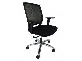 Ergonomic Low Back Mesh Office Chair BJ0220M